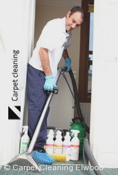 Steam Carpet Cleaning Company Elwood 3184