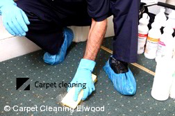 Carpet Cleaning Elwood 3184