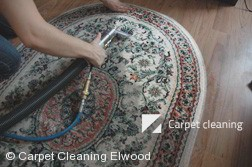 Rug Cleaning Services in Elwood
